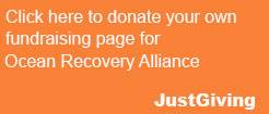 Click here to donate your own fundraising page for Ocean Recovery Alliance